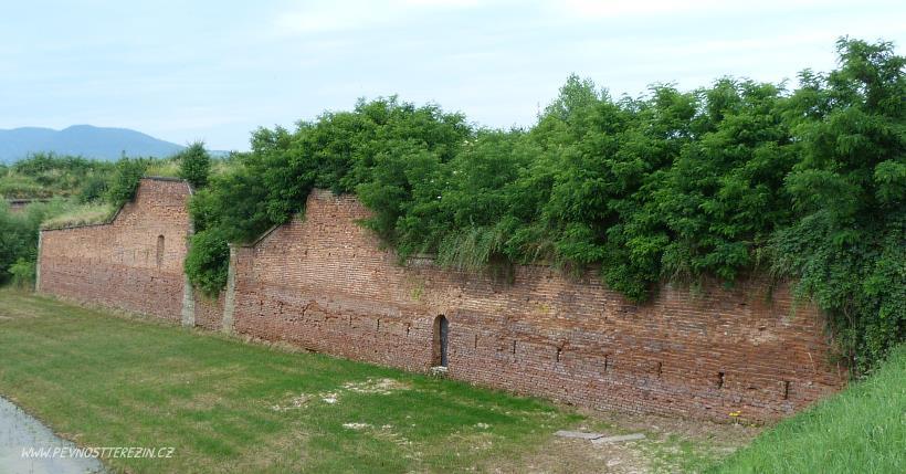 Zarostlá pevnost (červenec 2013)