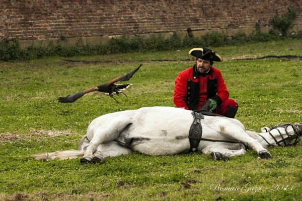 Josefínské slavnosti 2014 - Vznešené umění lovu