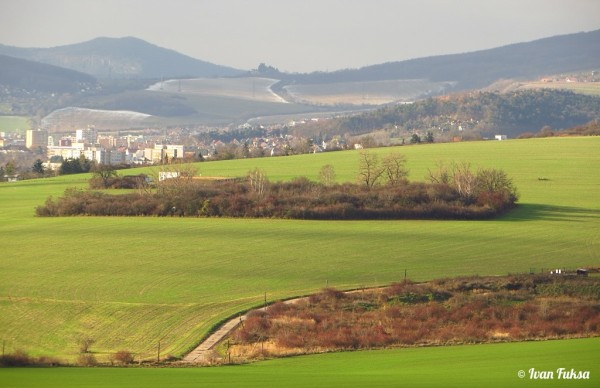 Pohled z kopce Křemín na fort č. V